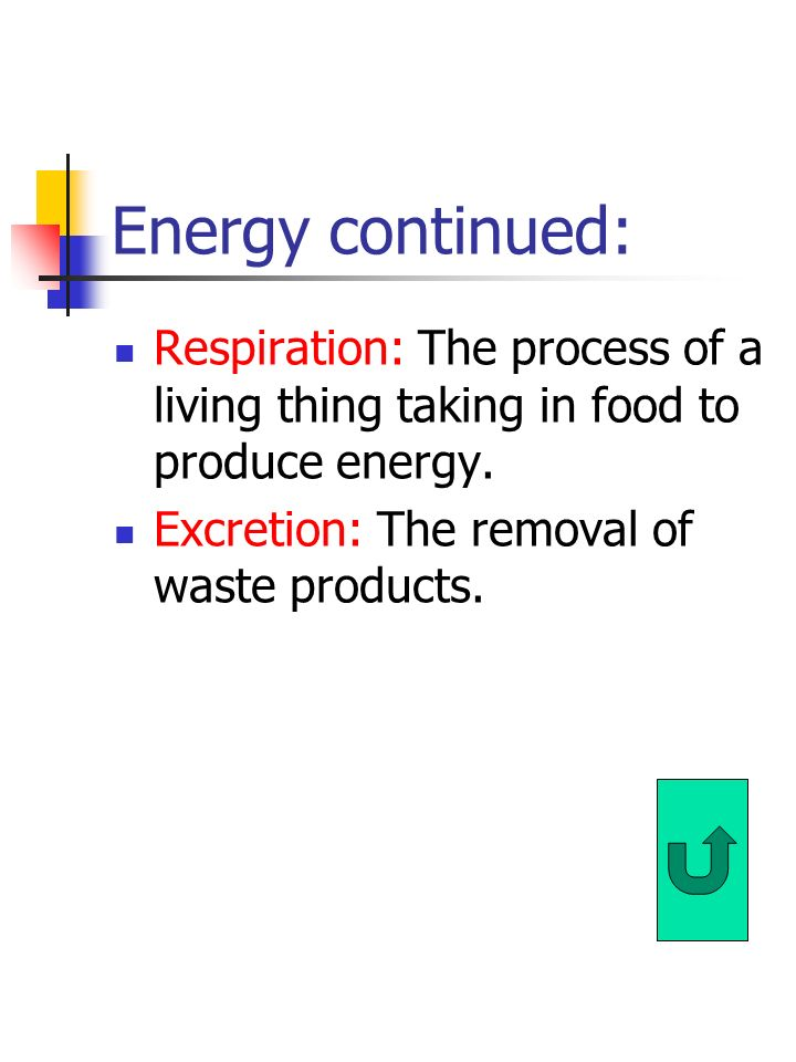 Energy continued: Respiration: The process of a living thing taking in food to produce energy.