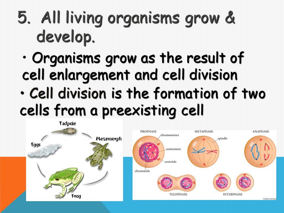 All living organisms grow & develop.