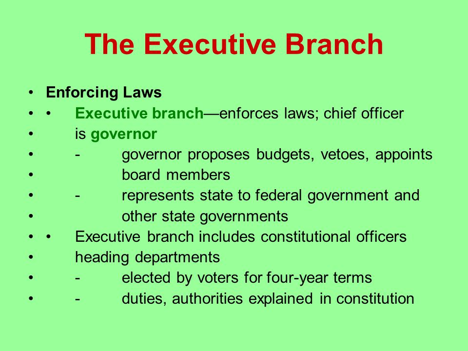 The Executive Branch Enforcing Laws