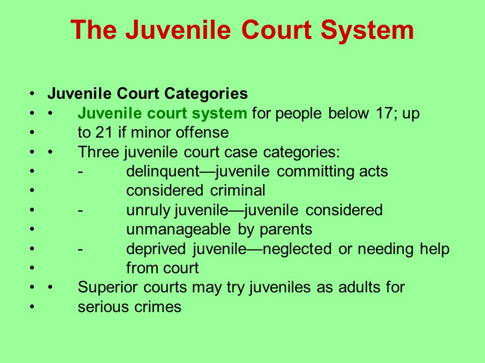 The Juvenile Court System