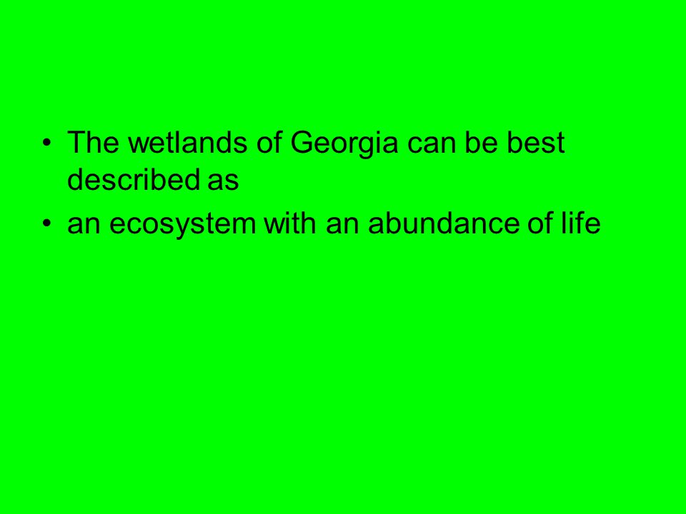 The wetlands of Georgia can be best described as