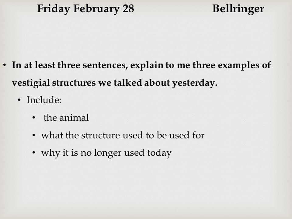 Friday February 28 Bellringer