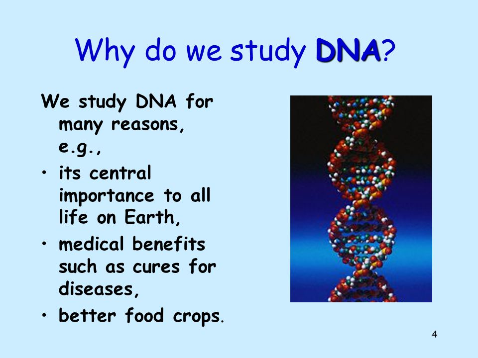 Why do we study DNA We study DNA for many reasons, e.g.,
