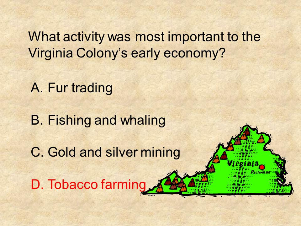 What activity was most important to the Virginia Colony's early economy
