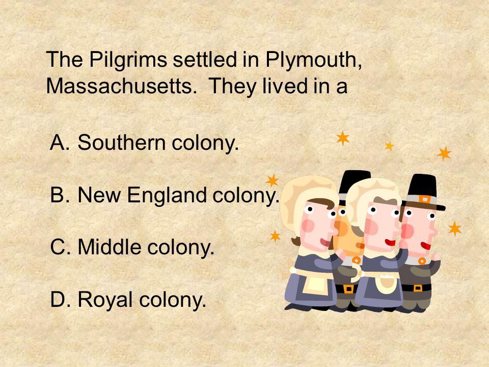 The Pilgrims settled in Plymouth, Massachusetts. They lived in a