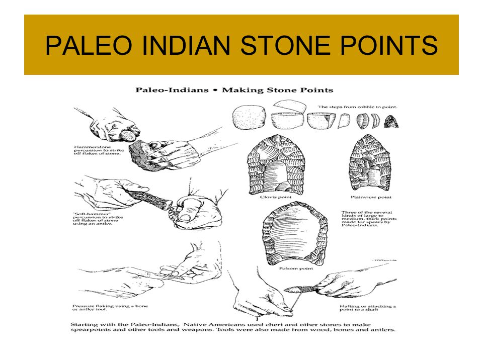 PALEO INDIAN STONE POINTS
