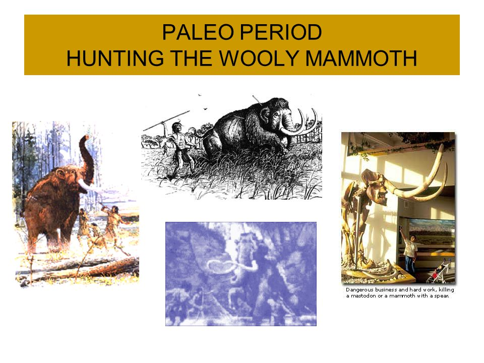 PALEO PERIOD HUNTING THE WOOLY MAMMOTH