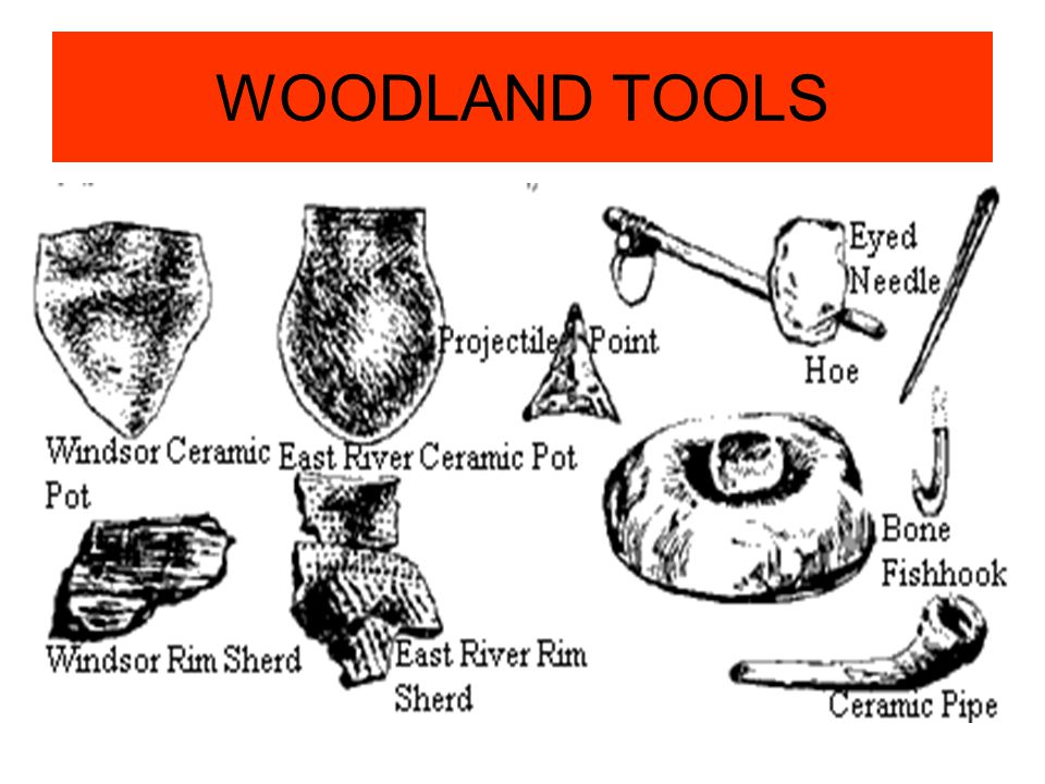 WOODLAND TOOLS