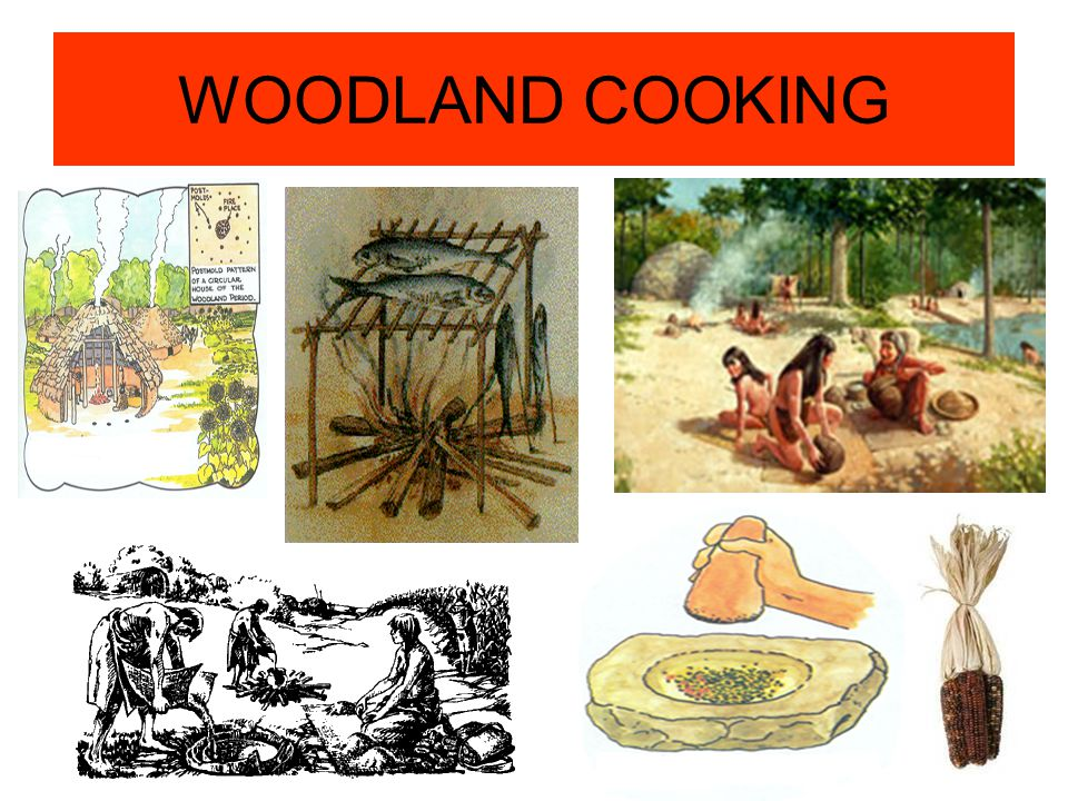WOODLAND COOKING