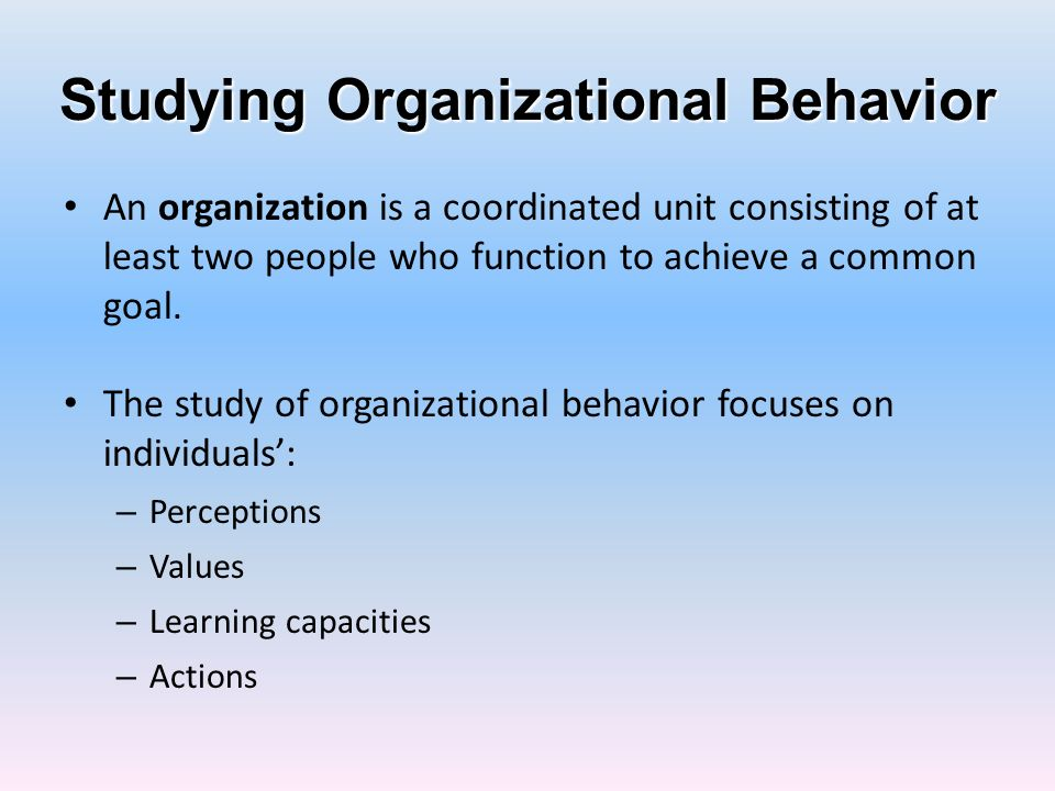 Studying Organizational Behavior
