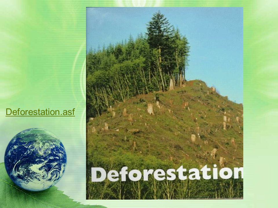 Deforestation.asf