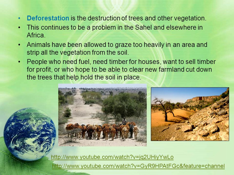 Deforestation is the destruction of trees and other vegetation.