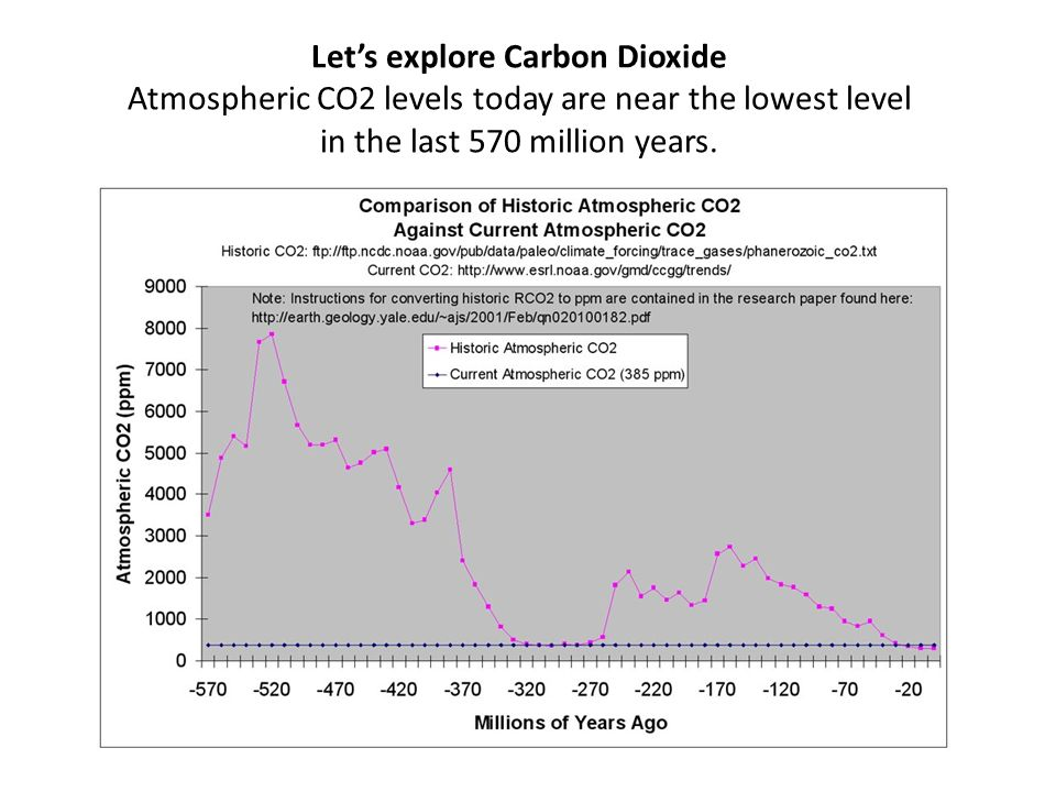 Let's explore Carbon Dioxide Atmospheric CO2 levels today are near the lowest level in the last 570 million years.