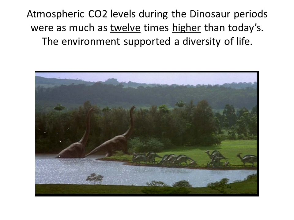 Atmospheric CO2 levels during the Dinosaur periods were as much as twelve times higher than today's.