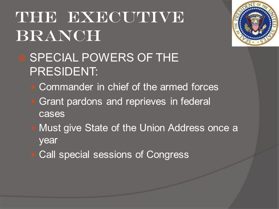 The Executive Branch SPECIAL POWERS OF THE PRESIDENT: