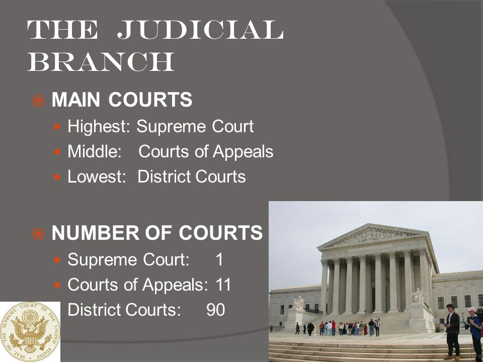 The Judicial branch MAIN COURTS NUMBER OF COURTS