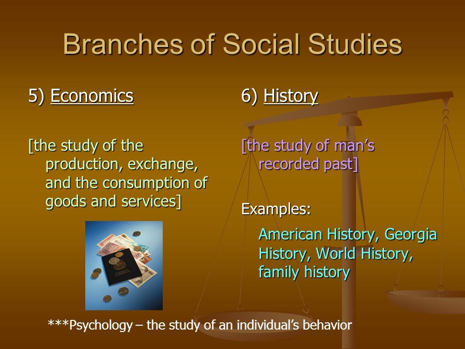 Branches of Social Studies