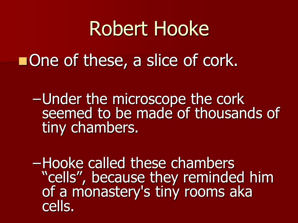 Robert Hooke One of these, a slice of cork.