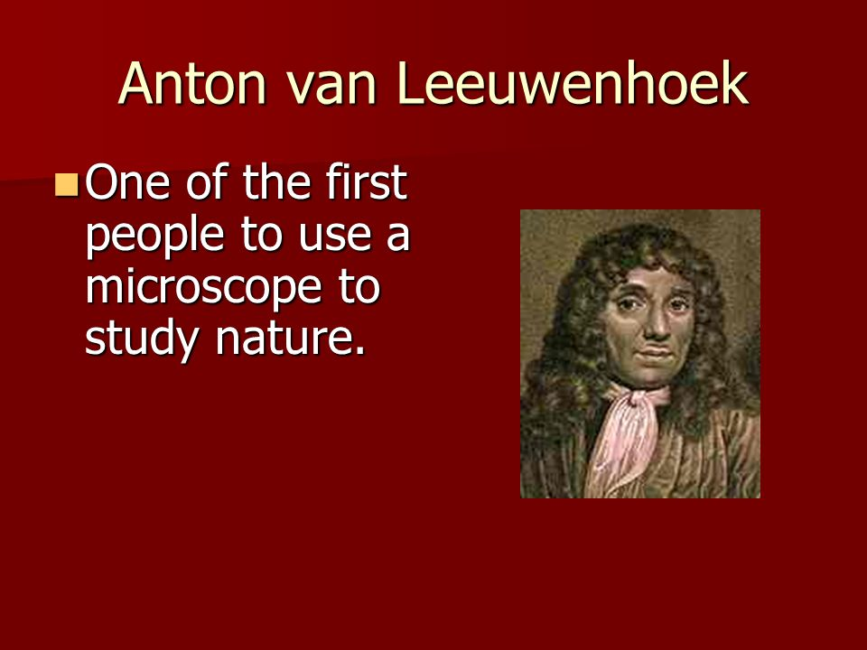 Anton van Leeuwenhoek One of the first people to use a microscope to study nature.