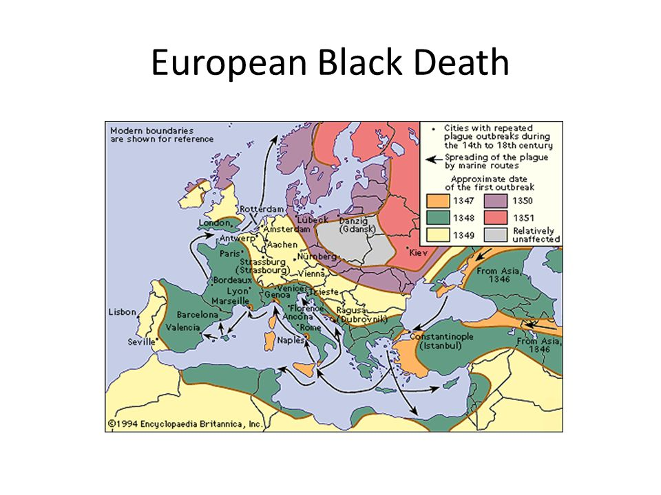 Ap world history review session 3 ppt video online download 2 european black death gumiabroncs Gallery
