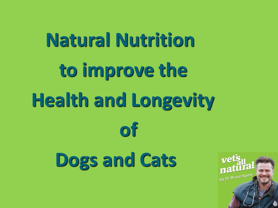Natural Nutrition to improve the Health and Longevity of Dogs and Cats