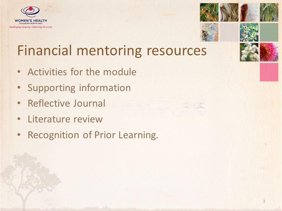 Financial mentoring resources