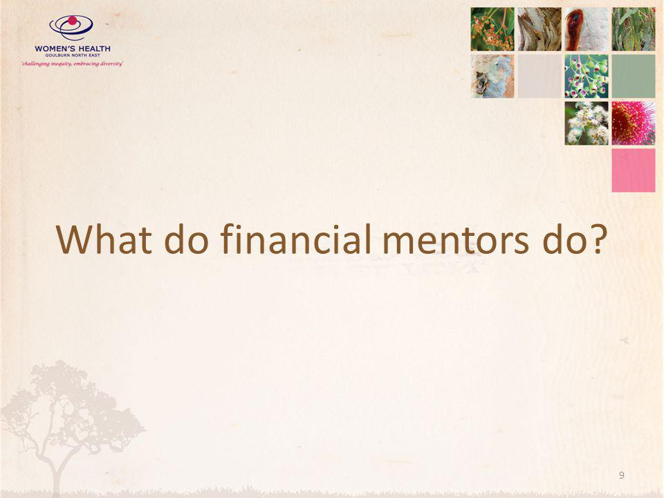 What do financial mentors do