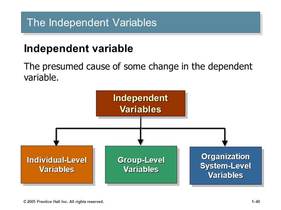 The Independent Variables