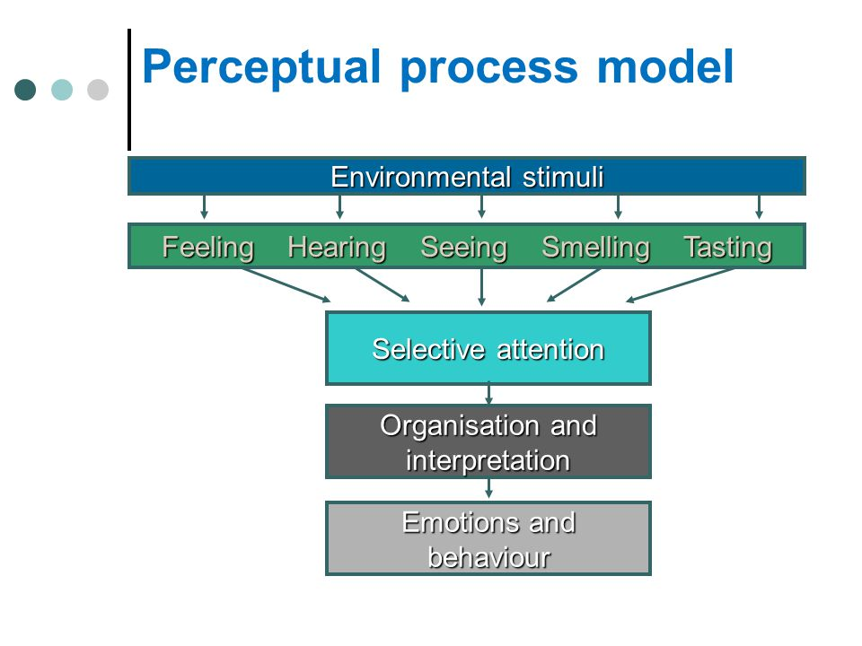 Perceptual process model