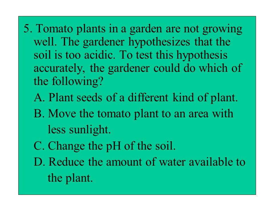 5. Tomato plants in a garden are not growing well