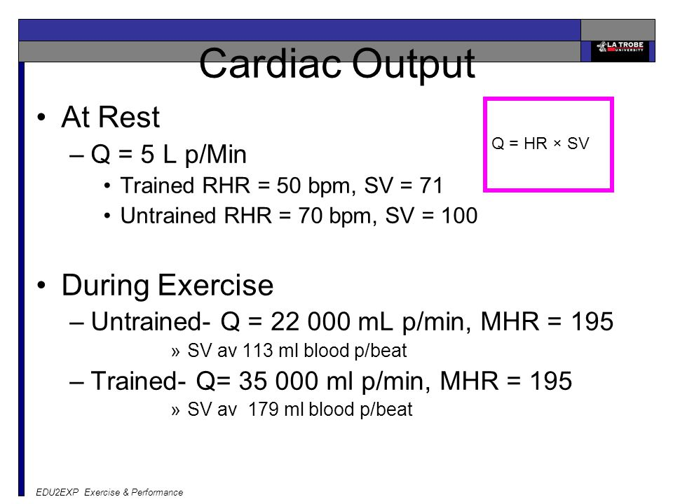 Cardiac Output At Rest During Exercise Q = 5 L p/Min
