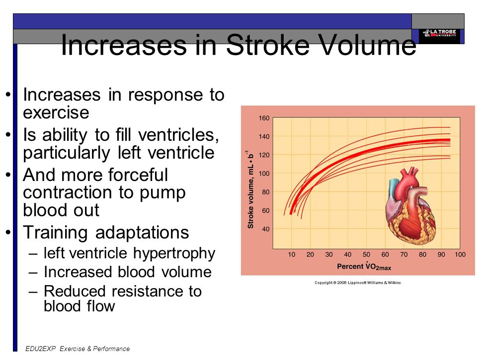 Increases in Stroke Volume