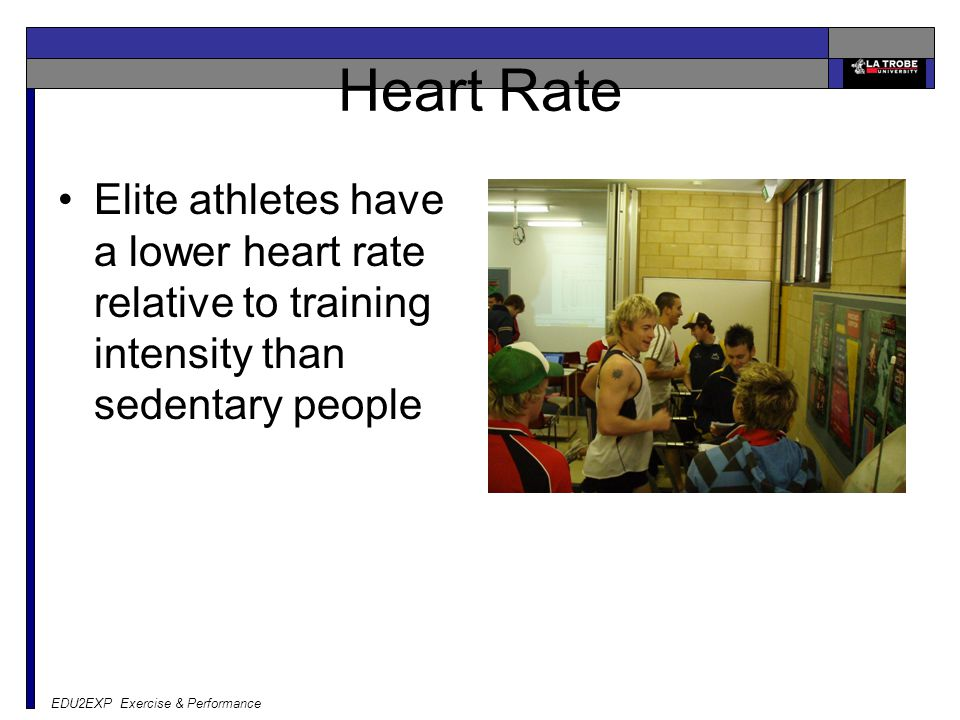 Heart Rate Elite athletes have a lower heart rate relative to training intensity than sedentary people.