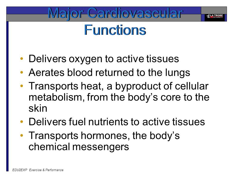 Major Cardiovascular Functions