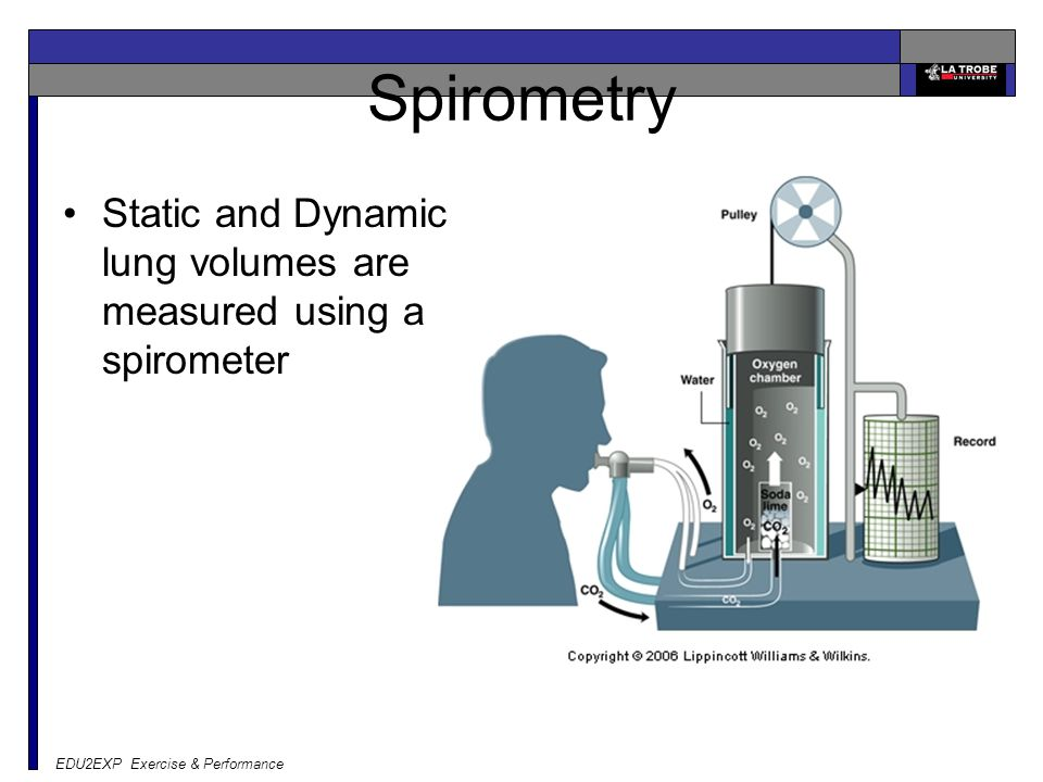 Spirometry Static and Dynamic lung volumes are measured using a spirometer.