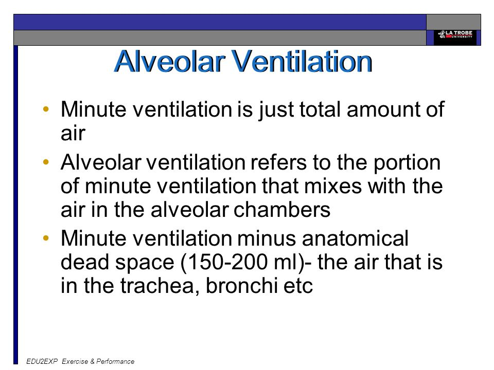 Alveolar Ventilation Minute ventilation is just total amount of air