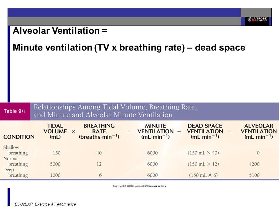 Alveolar Ventilation =