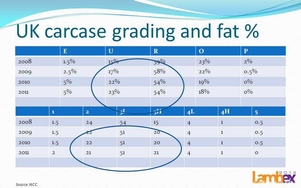 UK carcase grading and fat %