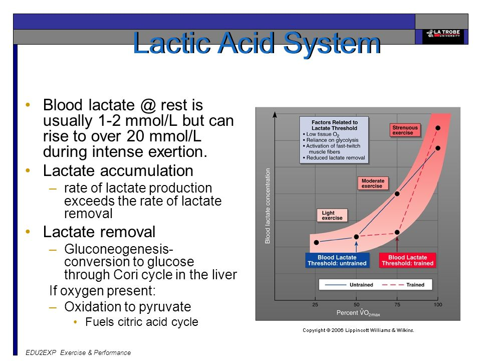 Lactic Acid System Blood lactate @ rest is usually 1-2 mmol/L but can rise to over 20 mmol/L during intense exertion.