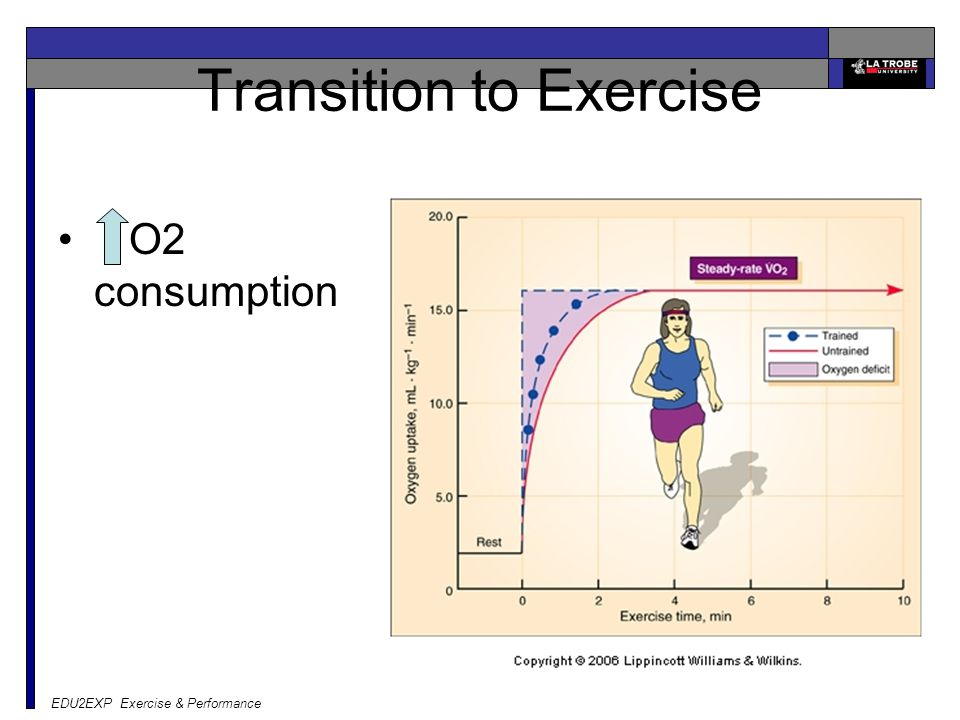 Transition to Exercise