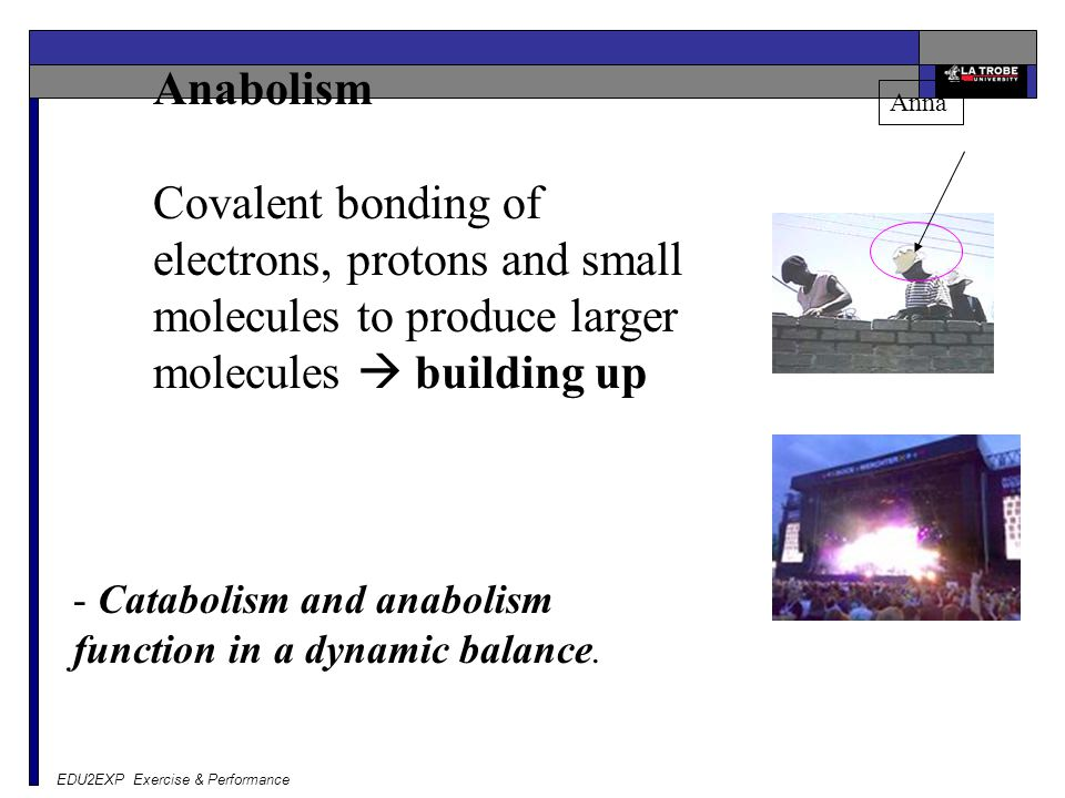 Anabolism Covalent bonding of electrons, protons and small molecules to produce larger molecules  building up.