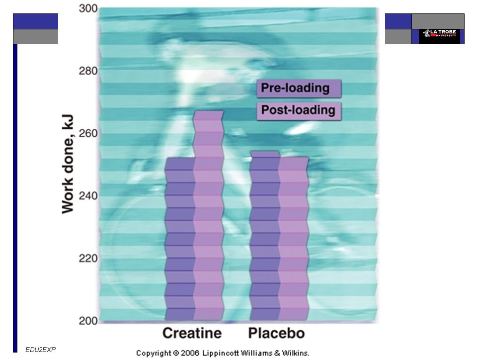 Effects of creatine loading versus placebo on total work accomplished during long term (80 minutes) repetitive sprint-cycling performance