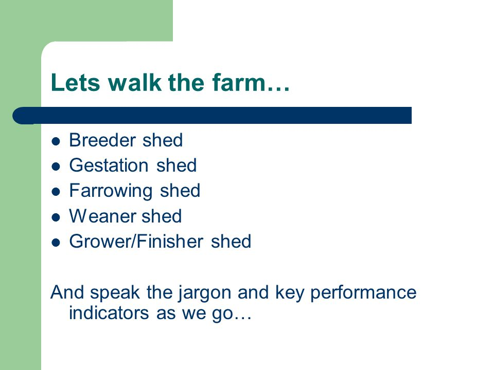 Lets walk the farm… Breeder shed Gestation shed Farrowing shed