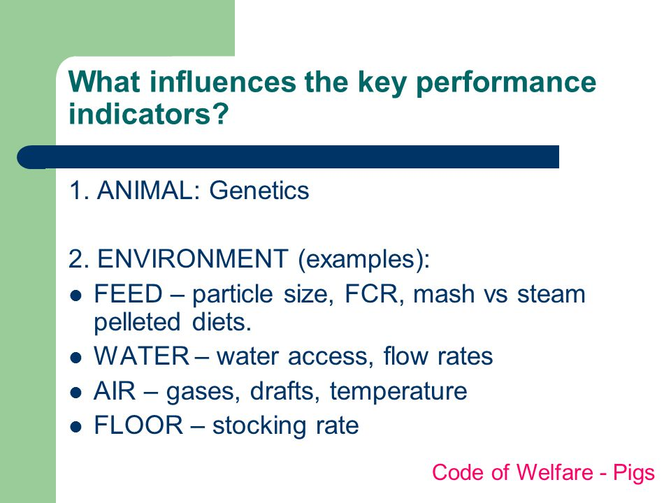 What influences the key performance indicators