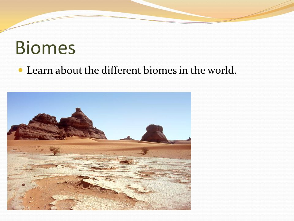 Biomes Learn about the different biomes in the world.