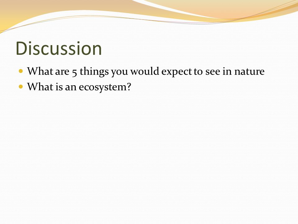 Discussion What are 5 things you would expect to see in nature