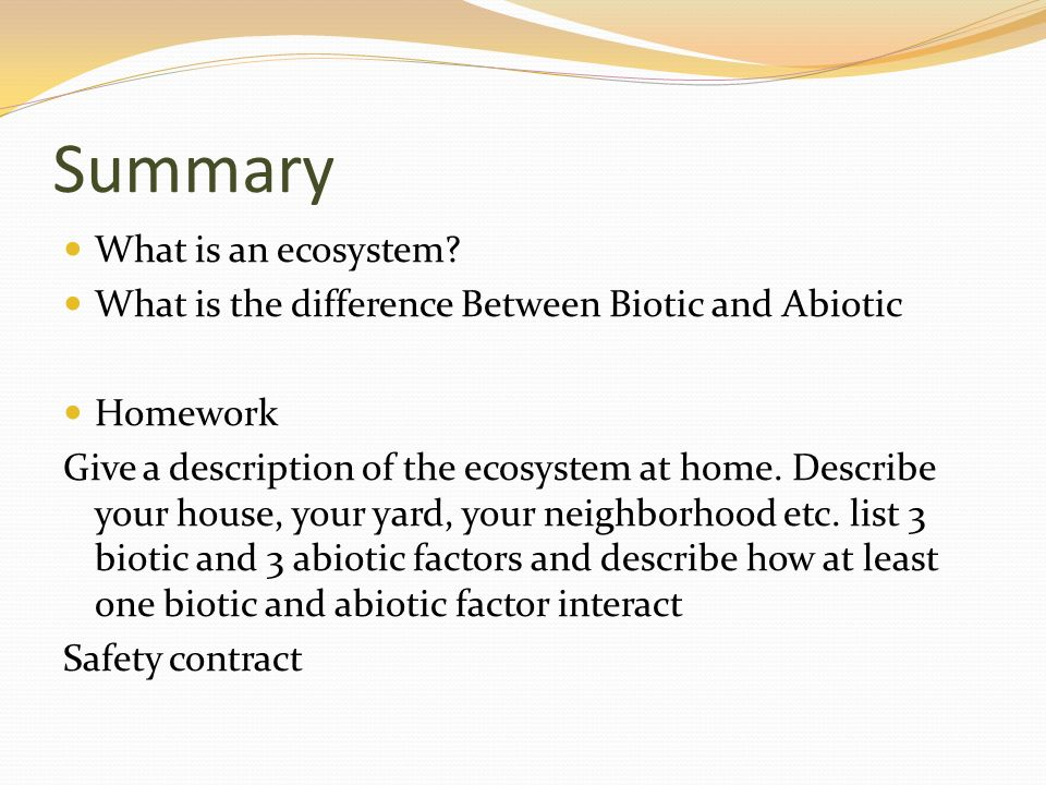 Summary What is an ecosystem