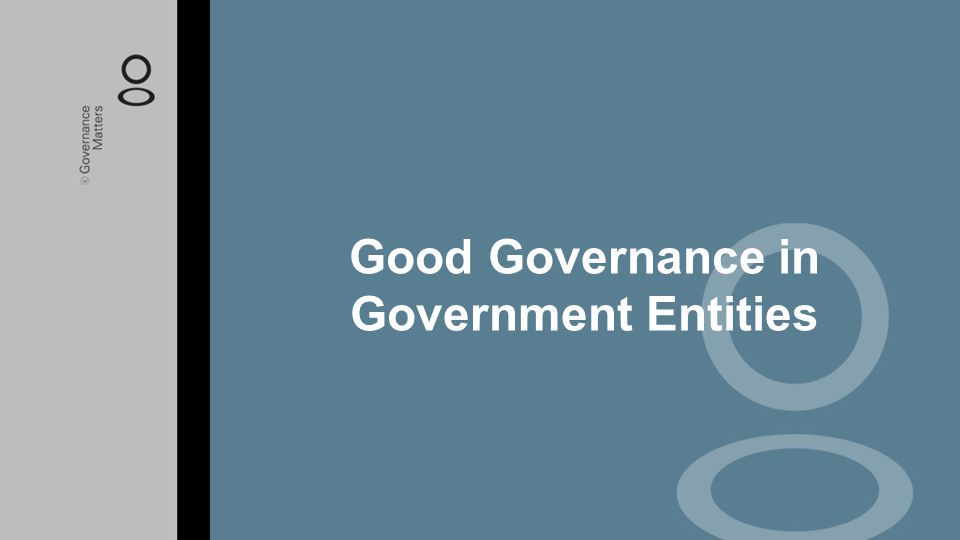 Good Governance in Government Entities
