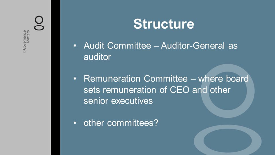 Structure Audit Committee – Auditor-General as auditor