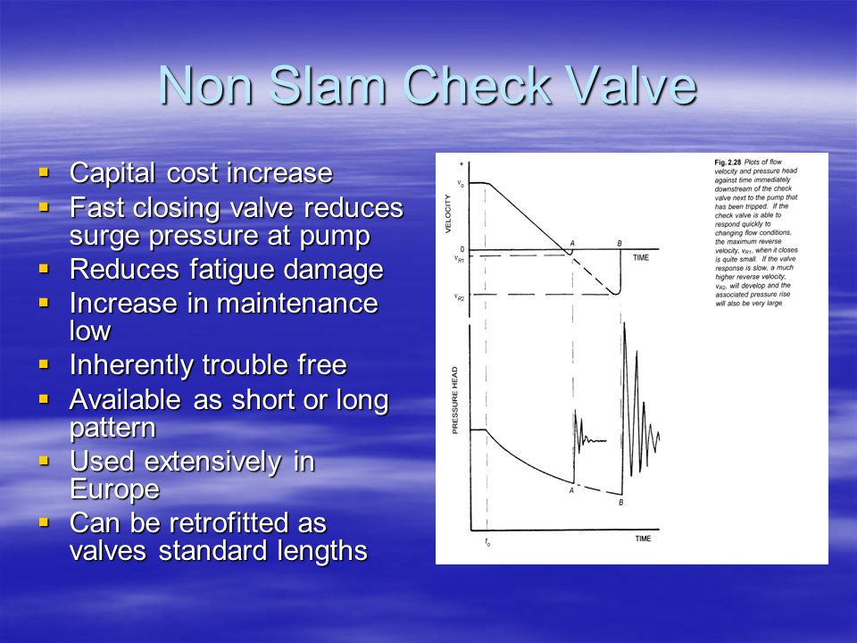 Non Slam Check Valve Capital cost increase